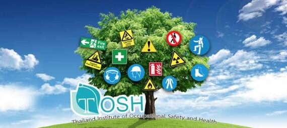 Thai Occupational Safety and Health