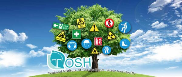 Understanding the Thai OSH Act and Associated Penalties